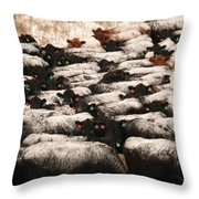 Cattle With Snow On Their Backs Throw Pillow
