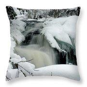 Cattyman Falls In Winter - Vertical Throw Pillow