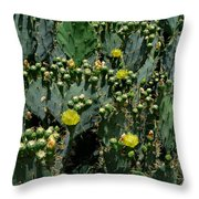 Catus Blossoms Throw Pillow