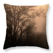 Caught Between Light And Dark Throw Pillow
