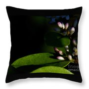 Caught Between Shadow And Light Throw Pillow