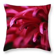 Caught In The Dream Throw Pillow