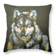 Caught In The Head Lights Throw Pillow