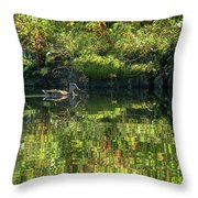 Caught In The Reflection Throw Pillow