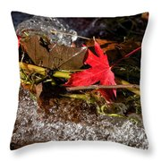 Caught In The Waterfall Throw Pillow