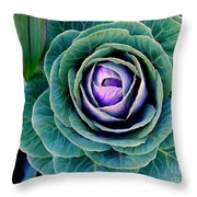 Cauliflower Abstract #6 Throw Pillow