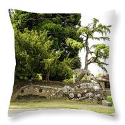 Causland Memorial Park In Anacortes Throw Pillow