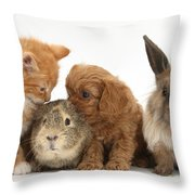 Cavapoo Pup, Rabbit, Guinea Pig Throw Pillow
