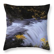 Cave Falls Throw Pillow