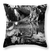 Cave Reflection 2 Throw Pillow