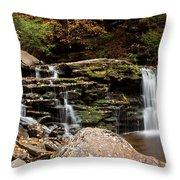 Cayuga Falls Throw Pillow
