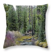 Above The Falls Throw Pillow
