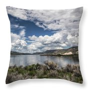 Blue Mesa Throw Pillow