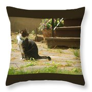 Cecil Throw Pillow