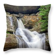 Cedar Falls 9077 Throw Pillow