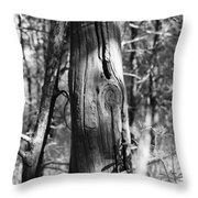 Cedar Fence Post Throw Pillow