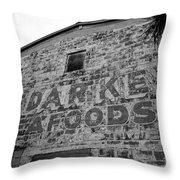 Cedar Key Sea Foods Throw Pillow by David Lee Thompson