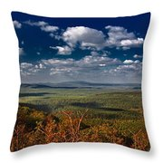 Cedar Lake Vista Throw Pillow