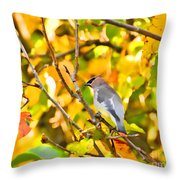 Cedar Waxwing In Autumn Leaves Throw Pillow