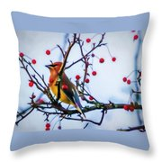 Cedar Waxwing Painting Throw Pillow
