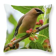 Cedar Waxwing With Mulberries Throw Pillow