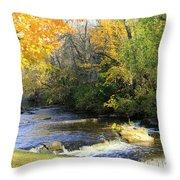 Cedarburg's Cedar Creek  Throw Pillow