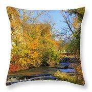 Cedarcreek Fall Throw Pillow