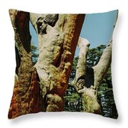 Cedars Of God Jesus Tree  Throw Pillow