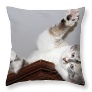 Ceiling Fairies Throw Pillow