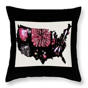 Celebrate America Throw Pillow