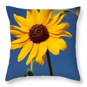 Celebrating Spring Throw Pillow
