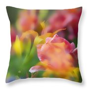 Celebration Of Color Throw Pillow