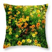 Celebration Of Yellows And Oranges Study 4 Throw Pillow