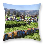 Celery Harvest Throw Pillow