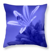 Celestial Love Throw Pillow