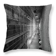 Cell Block Throw Pillow