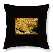 Cemetery Alley Throw Pillow