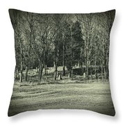 Cemetery In The Woods Throw Pillow