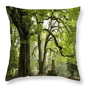 Cemetery  Trees 1 Throw Pillow