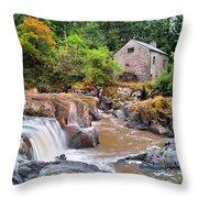 Cenarth 1 Throw Pillow