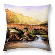 Cenarth Bridge And Falls Throw Pillow