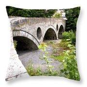 Cenarth Bridge Throw Pillow