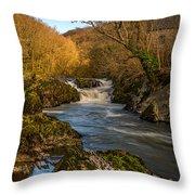 Cenarth Falls Throw Pillow