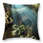 Cenote II Throw Pillow