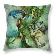 Censurable Proportion  Id 16098-014109-35150 Throw Pillow