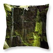Centennial Falls Throw Pillow