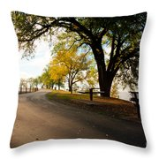 Centennial Trail Throw Pillow