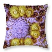 Center Of A Barrel Cactus Throw Pillow