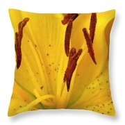 Center Of A Lily Throw Pillow