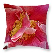 Center Of A Pink Camellia At Pilgrim Place In Claremont-california  Throw Pillow